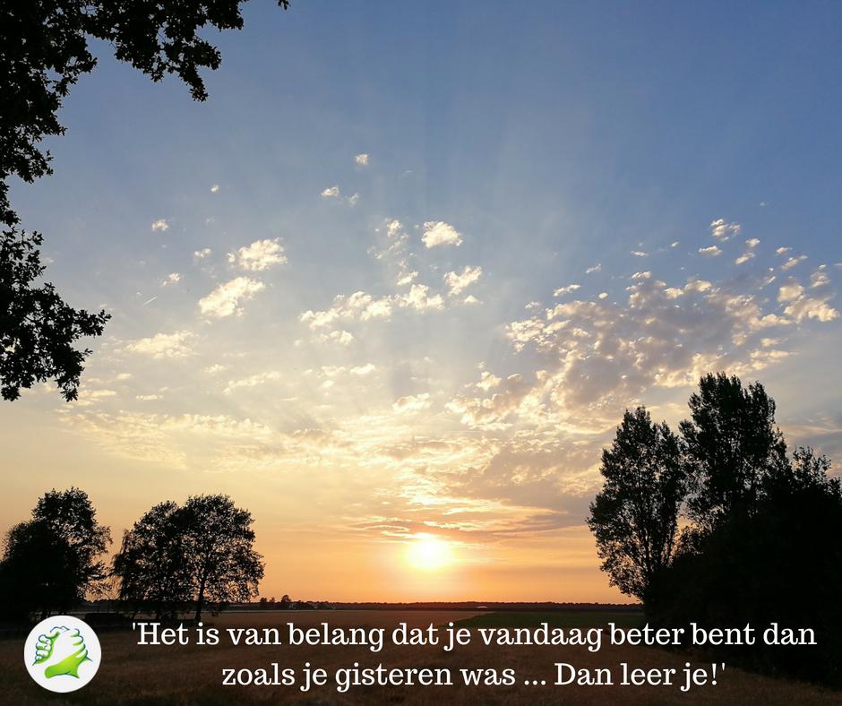 """""""Het is van belang ...  - © Cees van der Boom"""